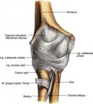 elbow-injuries-tennis-elbow-sprains-twists