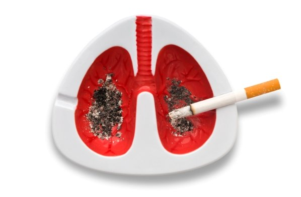 Pakla cigareta manje za dan života duže