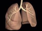 Šta učiniti u akutnom plućnom edemu?