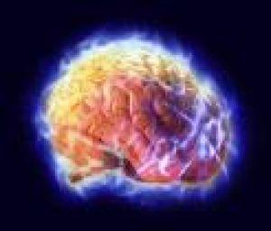 Šta je LTP i zašto svaki neuronaučnik voli da diskutuje o njemu