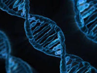 Kanadski naučnici iz Agencije 'Britiš Kolumbija Kanser' otkrili su gen koji može onemogućiti rast niza tipova tumora. Istraživači veruju da će njihovi rezultati o genu po imenu HACE1, omogućiti razvoj novih tretmana za više oblika raka.