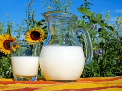 Mleko i mlečni proizvodi nezaobilazne su namirnice na svakoj trpezi. Neophodni su i deci i odraslima. Međutim, i danas se neki pitaju da li je zabluda da obrano mleko i mlečni prozvodi utiču na smanjenje telesne težine.