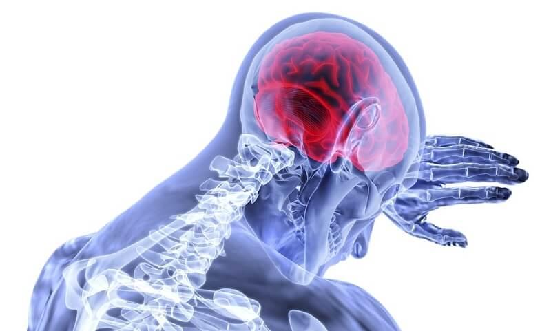 Otkriven nepoznat deo ljudskog mozga