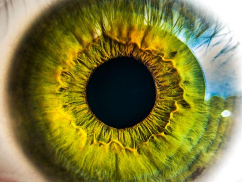 Zbog ove bolesti, svi segmenti oka mogu da budu zahvaćeni ukoliko se odgovorno ne vodi računa o dijabetesu.