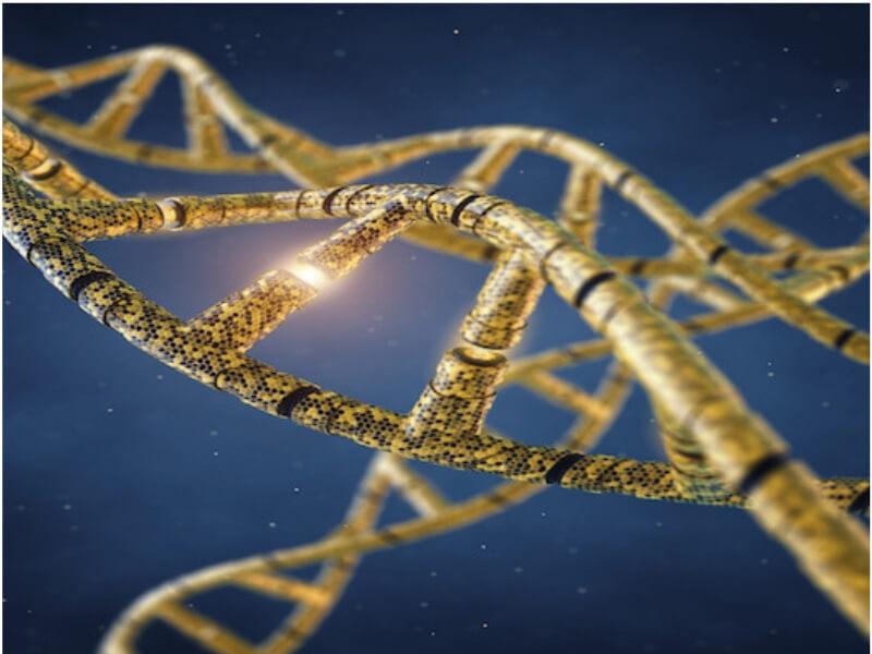 Genetski poremećaji koji se mogu otkriti u ranoj trudnoći