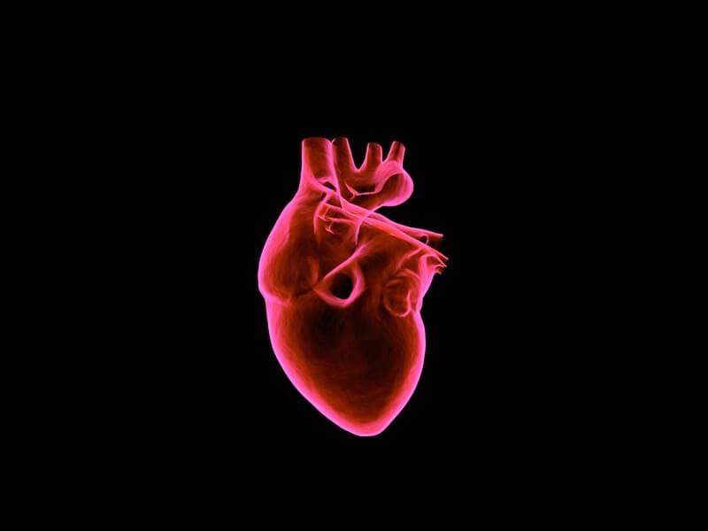 Akutni infarkt miokarda je izumiranje dela srčanog mišića zbog naglog prestanka cirkulacije kroz neku od arterija koje ishranjuju srce. Akutni infarkt je poslednja faza i samo jedan od oblika u razvoju koronarne bolesti (ishemijska bolest srca). Koronarna bolest se može manifestovati i kao stabila angina pectoris, nestabilna angina, vazospastična angina i asimtomatska ishemija miokarda.