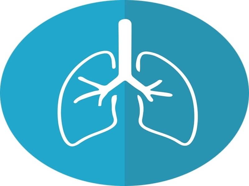 Nova strategija izlečenja je na pomolu. Naučnici su identifikovali više od 50 genetskih anomalija malignih tumora pluća i otvorili put dešifriranju bolesti koja godišnje ubije milion ljudi. Analizirajući DNK u 528 kanceroznih tumora, lekari su otkrili da u tome učestvuje gen NKX2-1, na koji dosad nisu sumnjali.