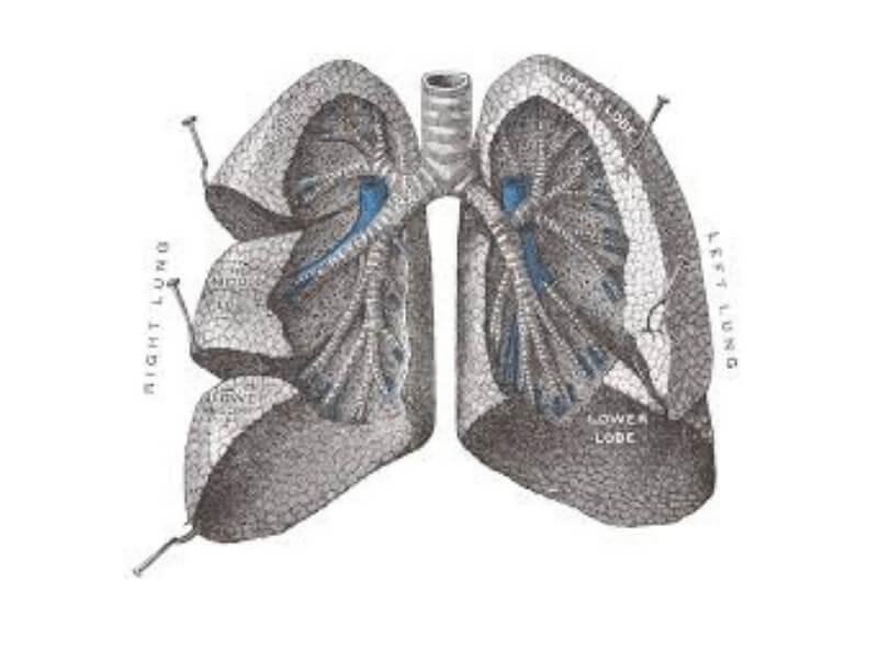 Akutni respiratorni distres sindrom (ARDS) odraslih osoba klinički je sindrom akutne respiratorne insuficijencije, odnosno akutnog plućnog edema. Nastaje usled oštećenja parenhima pluća i manifestuje se bilateralnom plućnim infiltratima, teškom i refrakternom hipoksemijom i teškom dispnejom, zbog redukcije plućne komplijanse.