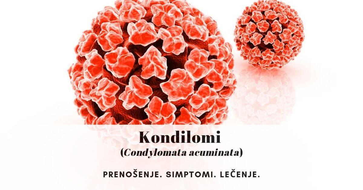 Condyloma acuminata mkb, Tipuri de papilomavirus uman. clasificare - Condyloma acuminata mkb