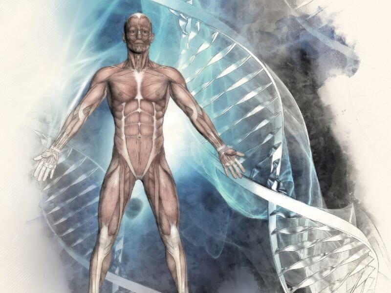 Nutrigenetika i nutrigenomika