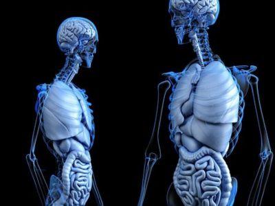 """Od čega će organizam oboleti zavisi od genetike i načina života, koji zajedno daju dijagnozu. Više o tome govori prof. dr Vesko Drašković u emisiji """"Vodič kroz djabetes""""."""
