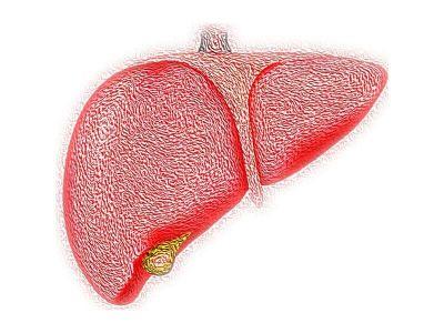 Jetra je najčešće povređivani abdominalni organ, bilo da njena povreda nastaje izolovano ili u sklopu politraume. Povrede jetre mogu biti otvorene (penetrantne)