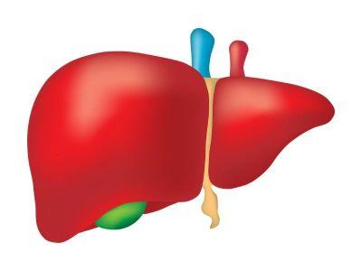 Ovako izgleda rak jetre i ovo su simptomi ove bolesti