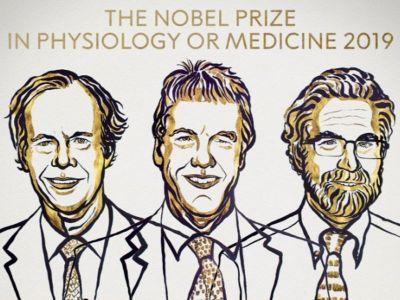 Ovogodišnja Nobelova nagrada u oblasti medicine i psihologije je otišla u ruke trojice naučnika, Vilijema Kelina, Grega Semenca i Pitera Retklifa, za istraživanje o prilagođavanju ćelija promenljivom snabdevanju kiseonikom,